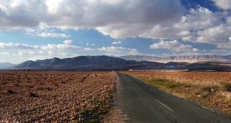 Campos de Risca (landscape) 1