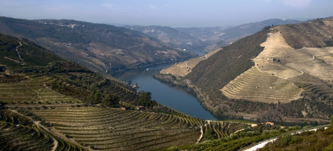 portugal_portuguese_wines_history_grapes_2