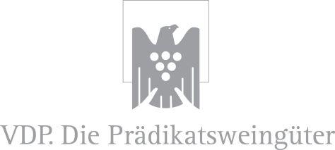 VDP-Logo2